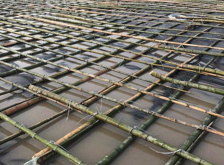 插打排水板施工公司